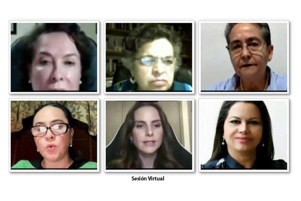 Sesión virtual 2 - Senado de la República